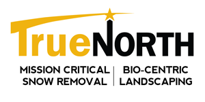 TNO-Logo-NewTag